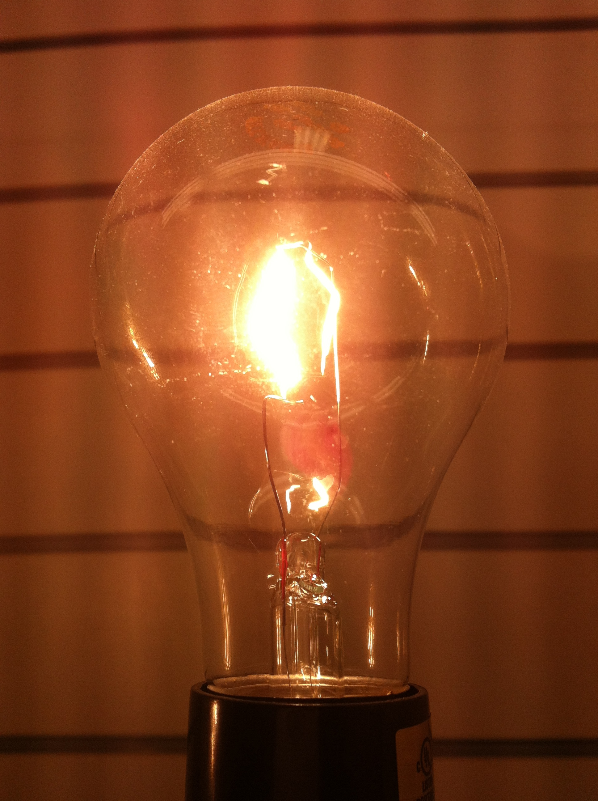 Bright ideas, photo by Wendy David-Gaines
